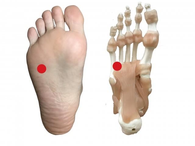 足裏の肝臓のツボ